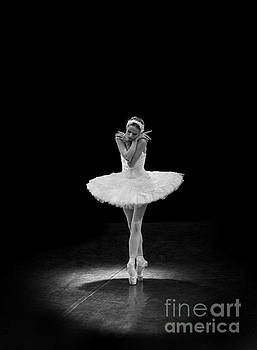 Clare Bambers - Dying Swan 5 Alternative Size