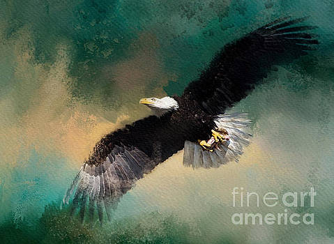 Eagle 1 by Jim Hatch