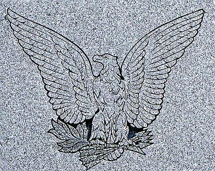 Eagle by Dennis Dugan
