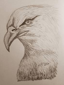Maria Urso - Eagle Drawing 1