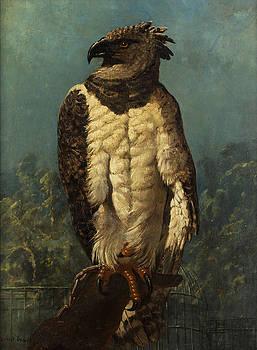 Eagle by Ernest-Henry Griset