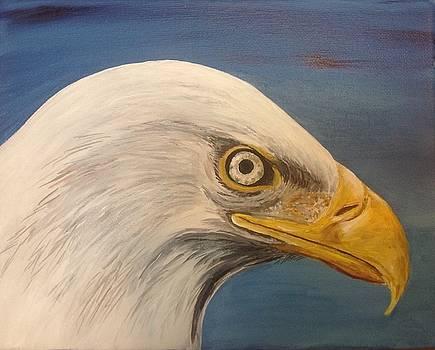 Eagle eye by Andrea Patton