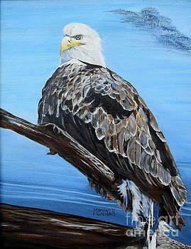 Eagle Eye by Marilyn  McNish