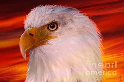 Nick Gustafson - Eagle Eye