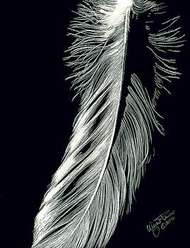 Eagle Feather by Wayne Pruse