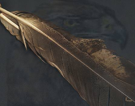 Eagle Feather by Will Logan
