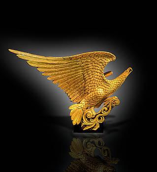 Eagle Figure Head  by Gary Warnimont
