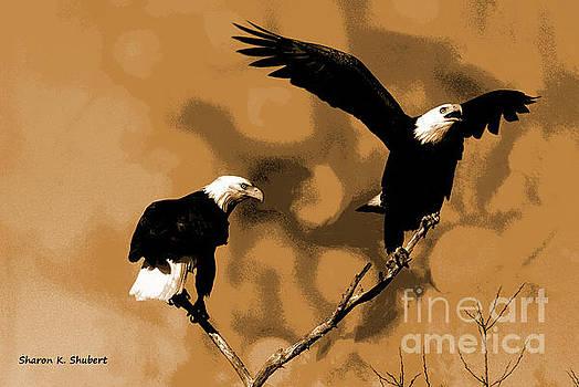 Eagle Friends by Sharon K Shubert
