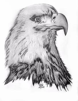 Gilbert Photography And Art - Eagle