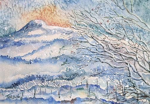 Eagle Hill, Snow Falling Softly . by Trudi Doyle