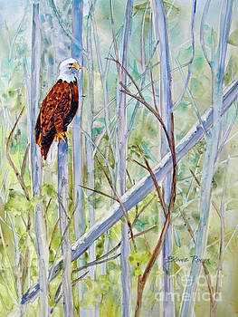 Eagle in the Forest by Bonnie Rinier