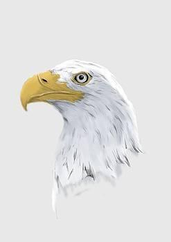 Eagle by Jarek Kossman