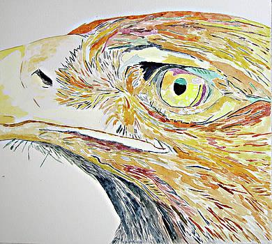 Eagle by Lea Cox