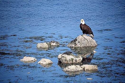 Eagle Rocks by Brent Easley