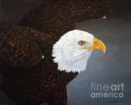 Eagle by Sid Ball