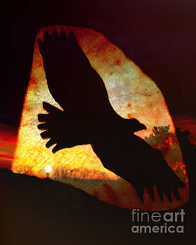 Eagle Sunset by Kathy M Krause