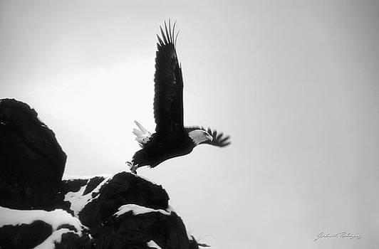 Eagle Takeoff at Adak, Alaska by John A Rodriguez