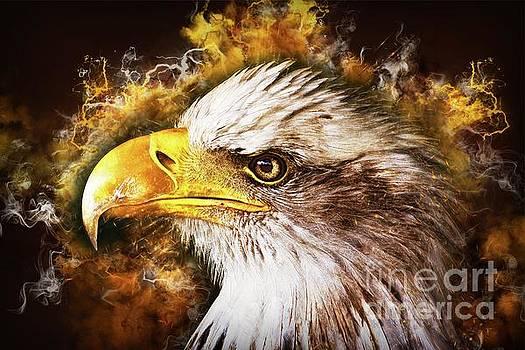 Eagles Fury by Putterhug Studio