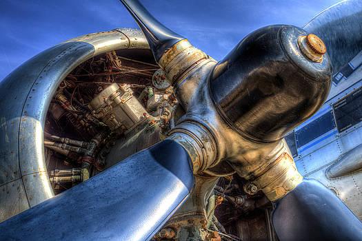 Earlier Days Of Flight by David Pyatt