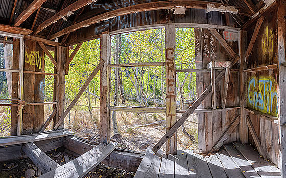 Early Autumn Foliage Outside Dilapidated Shack Between Lake Tahoe and Truckee, California by Brian Ball