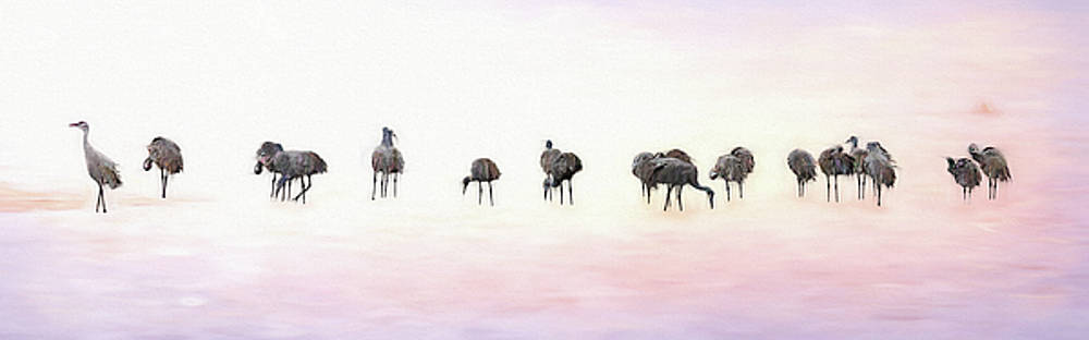 Susan Rissi Tregoning - Early Birds