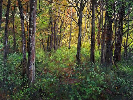 Early Fall by Mark Maritato
