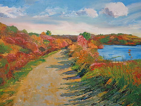 Early Fall Shadows by Maureen Obey