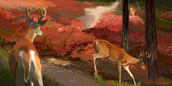 Early Fall Whitetail by Pam Little