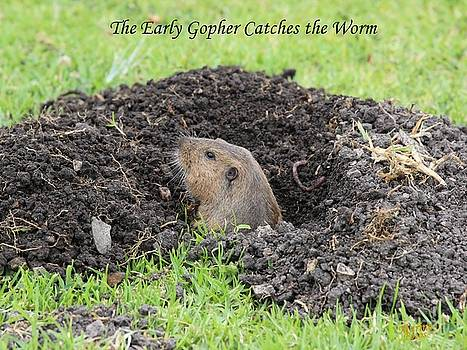 Gary Canant - Early Gopher Catches the Worm