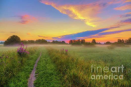Early morning 4 by Veikko Suikkanen