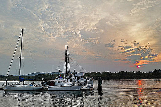 Early Morning Calm by Suzy Piatt