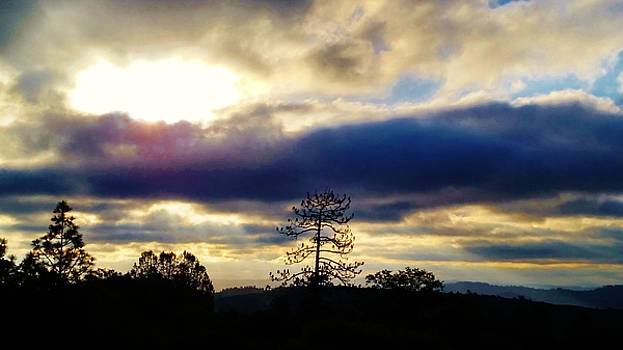 Early Morning Dawn and Ray of Light by Peggy Leyva Conley