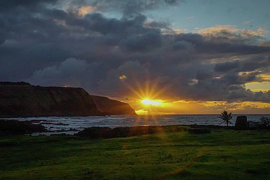 Early Morning Flair by Paki O'Meara