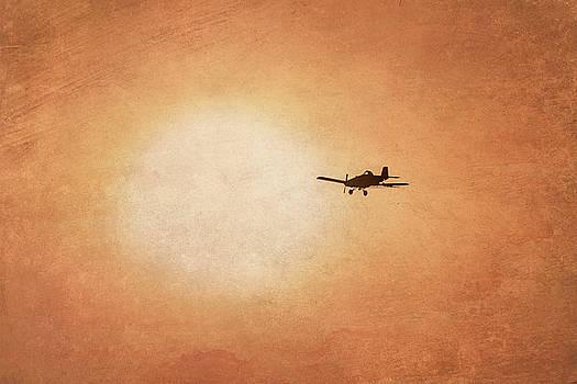 Early Morning Flight by Ramona Murdock