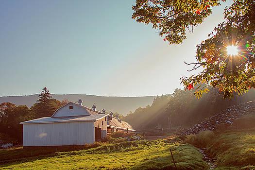 Early Morning Fog by John Rivera