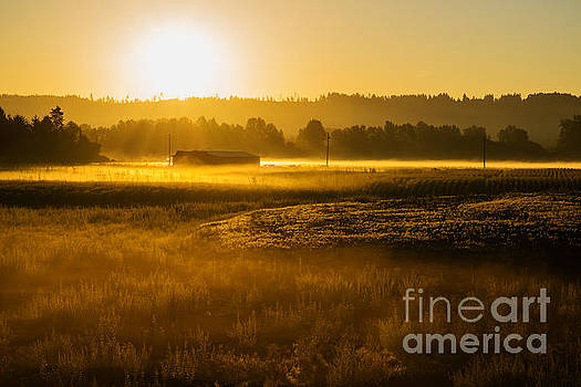 Early Morning in the Valley by MaryJane Armstrong
