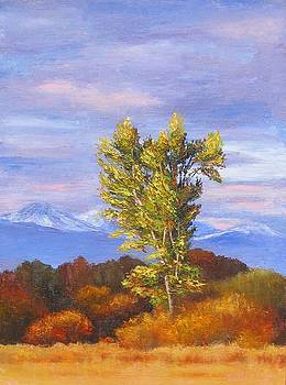 Early Morning Light by Teresa Kelly-Tagas