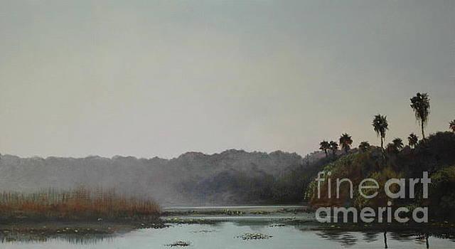 Early morning mist by Michael Nowak