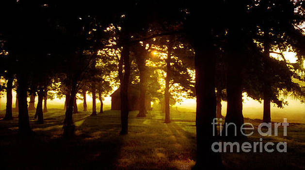 Early Morning by Neil Finnemore