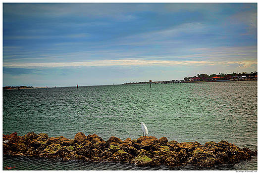 Early Morning on the Matanzas Bay by Rogermike Wilson
