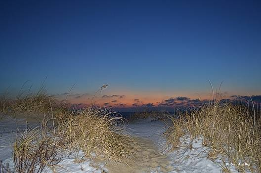 Early Morning Snow  by Barbara Ann Bell