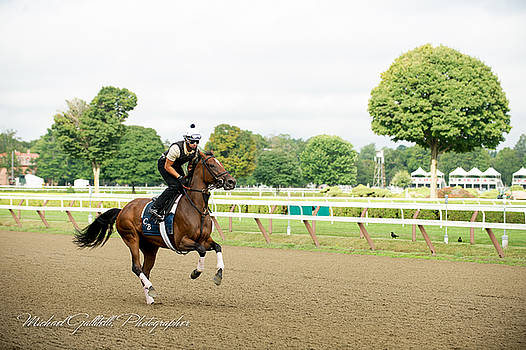 Early Morning Workout at Saratoga 14 by Michael Gallitelli