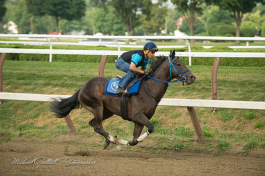 Early Morning Workout at Saratoga 16 by Michael Gallitelli