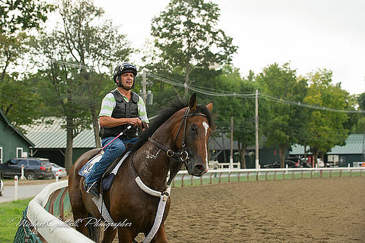 Early Morning Workout at Saratoga 19 by Michael Gallitelli