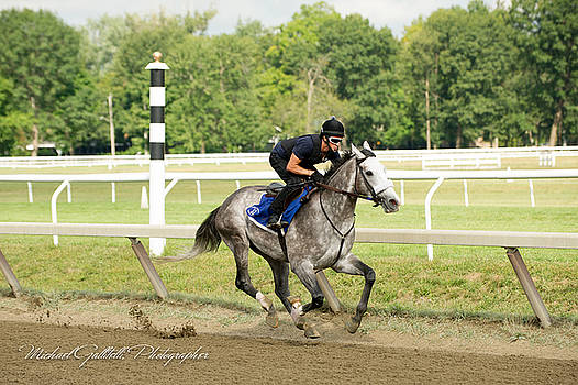 Early Morning Workout at Saratoga 23 by Michael Gallitelli
