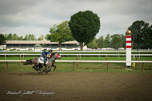 Early Morning Workout at Saratoga 26 by Michael Gallitelli