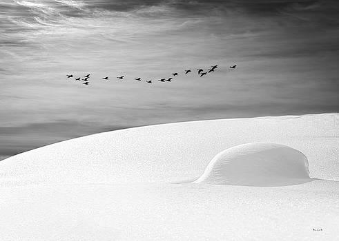 Early Snow by Bob Orsillo