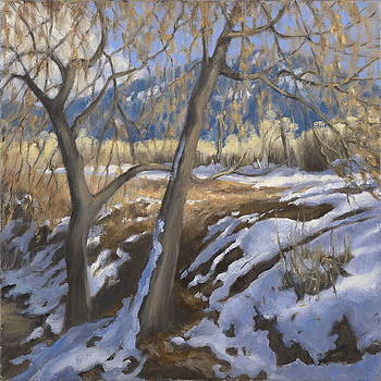 Early snow in Arroyo Seco by Jane Grover