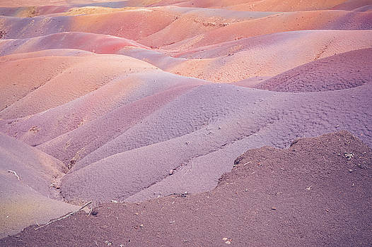 Jenny Rainbow - Earth Bodyscape.  Natural Abstract 5