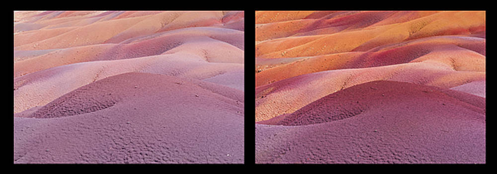 Jenny Rainbow - Earth Bodyscape.  Natural Abstract. Diptych